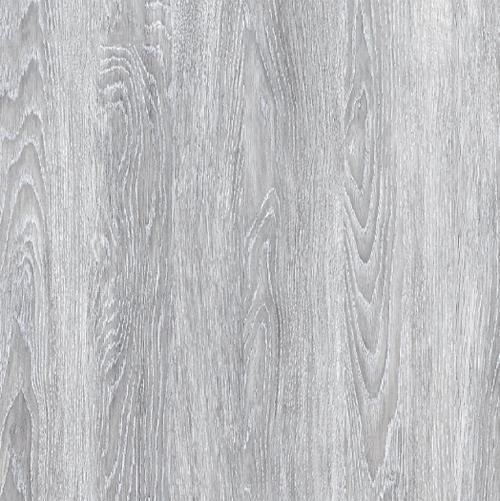 sivý dub greko - erkado